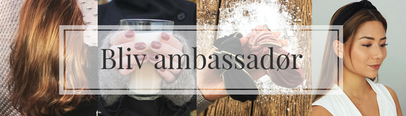 Ambassadør