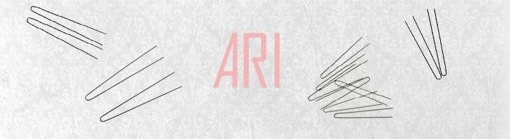 Ari - Køb Ari her - Tilbud på Ari - Billigt Ari - Hurtig levering